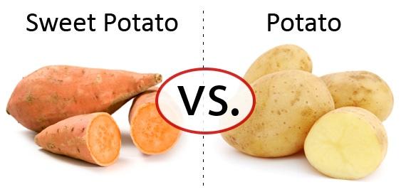 White Rice vs Brown Rice (potatoes too!)