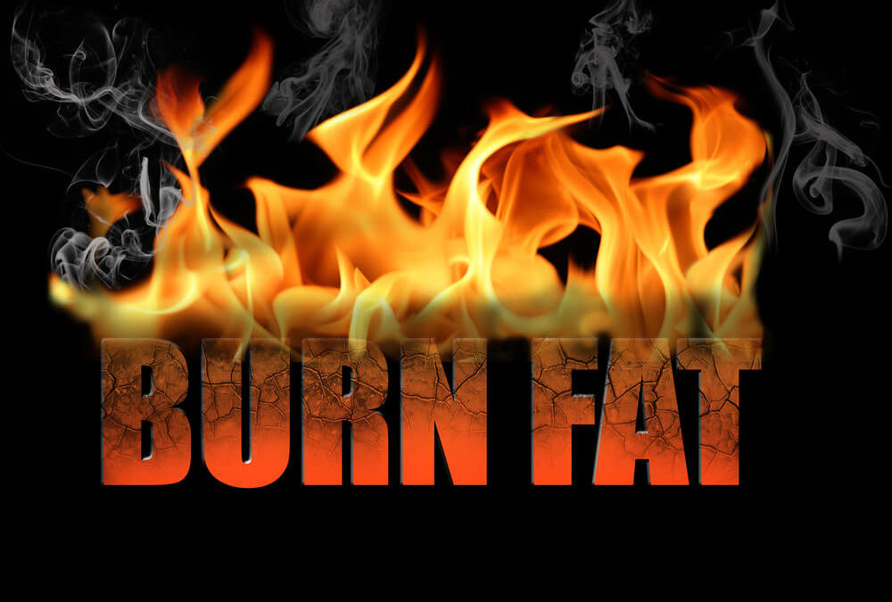 5 Fat Burning Ideas